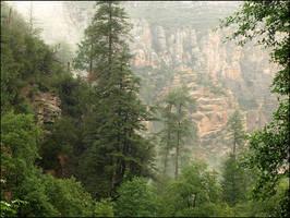 Sedona Canyon by jensaarai