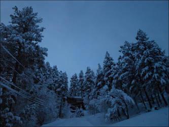 Snowed In - O1 by jensaarai