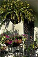 Balcony Garden by jensaarai