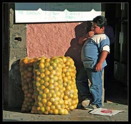 Pondering Lemons by lorrainemd