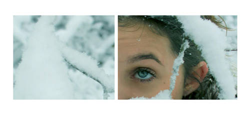 Snow ID by Emily-Pictures