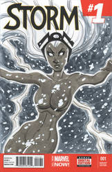 Storm Sketch Cover by calslayton