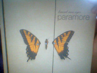 Paramore Deluxe Box Set by Jenstar123321