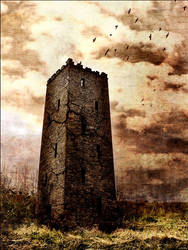 The Tower by shion