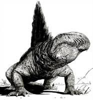 Dimetrodon by T-RexJones