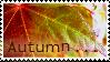'Autumn . . .' Stamp. by ECC500