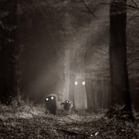 THE BAD WALK THROUGH THE WOODS by LEQUARK
