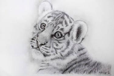 Tiger Cub by WhiteTiger22