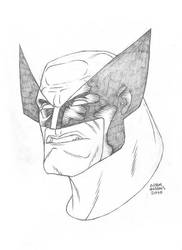 $25 Wolverine Sketch by Autaux