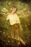 A Fairy's Dream by Le-Regard-des-Elfes
