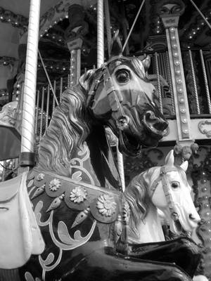 The Steed of Honfleur. by AveryARSENIC