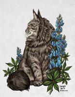 Bailey and Bluebonnets by Kiriska
