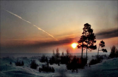 Sundown In Arcipelago Forest Mars 3st            1 by eskile
