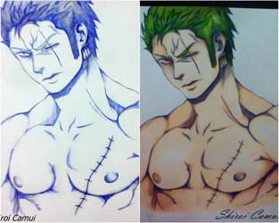 Roronoa Zoro: One Piece (Pen and Pencil) 2 by Shiroi-Camui
