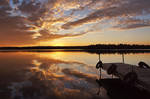 suddenly sunset by ariseandrejoice