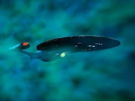 Enterprise E in Nebula by Xploder004