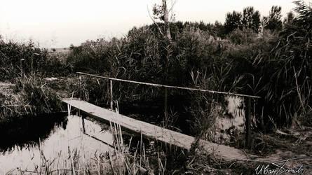 The bridge by zulu-zlo