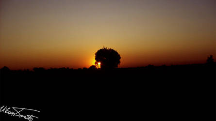 Sunset by zulu-zlo