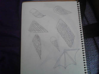 My wings sketches by Sampuig306