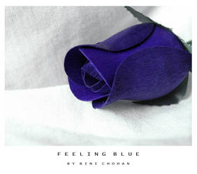 Feeling Blue by xxbcxx
