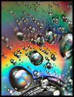 Rainbow by xxbcxx