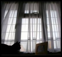 The Window by xxbcxx