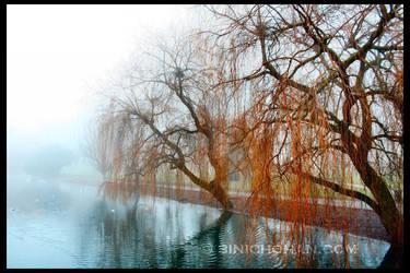 At Wardown Lake by xxbcxx