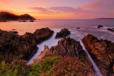 Point Lobos Twilight by enunez
