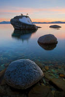 Bonsai Rock Winter by enunez