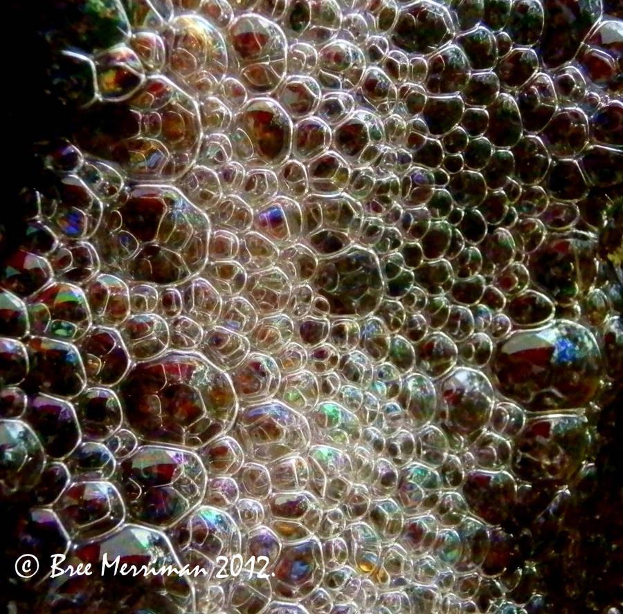 Native Bubbles II by BreeSpawn