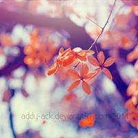 Touch. .. by addy-ack