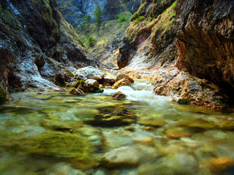Marble Canyon 2nd by Burtn