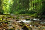 Follow The River 4th-Summer by Burtn