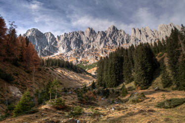 Pines And Peaks 2nd by Burtn