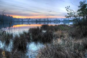 Cold November by Burtn