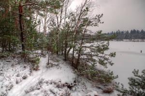 Walking Along The Lake by Burtn