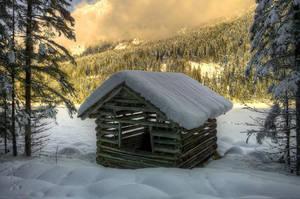 Seegut Winter by Burtn