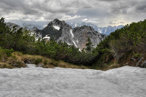 The Last Snow by Burtn