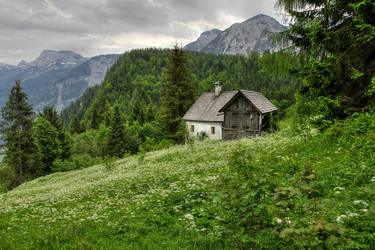 Lonesome Old Home by Burtn