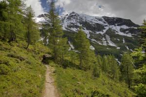 Mountain Path by Burtn