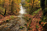 Autumn Forest With Waterfall by Burtn