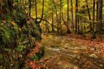 Peaceful Fall by Burtn