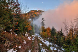 Autumn Melancholy by Burtn