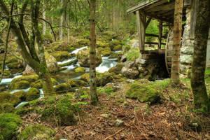 Old Mill's Rest by Burtn