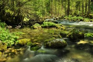 Tender River by Burtn