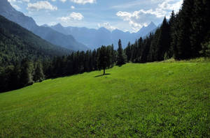 Valley by Burtn