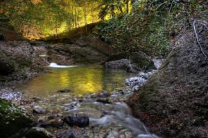 Autumn Riverscape by Burtn