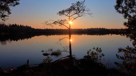 Fancy Sunset by Burtn