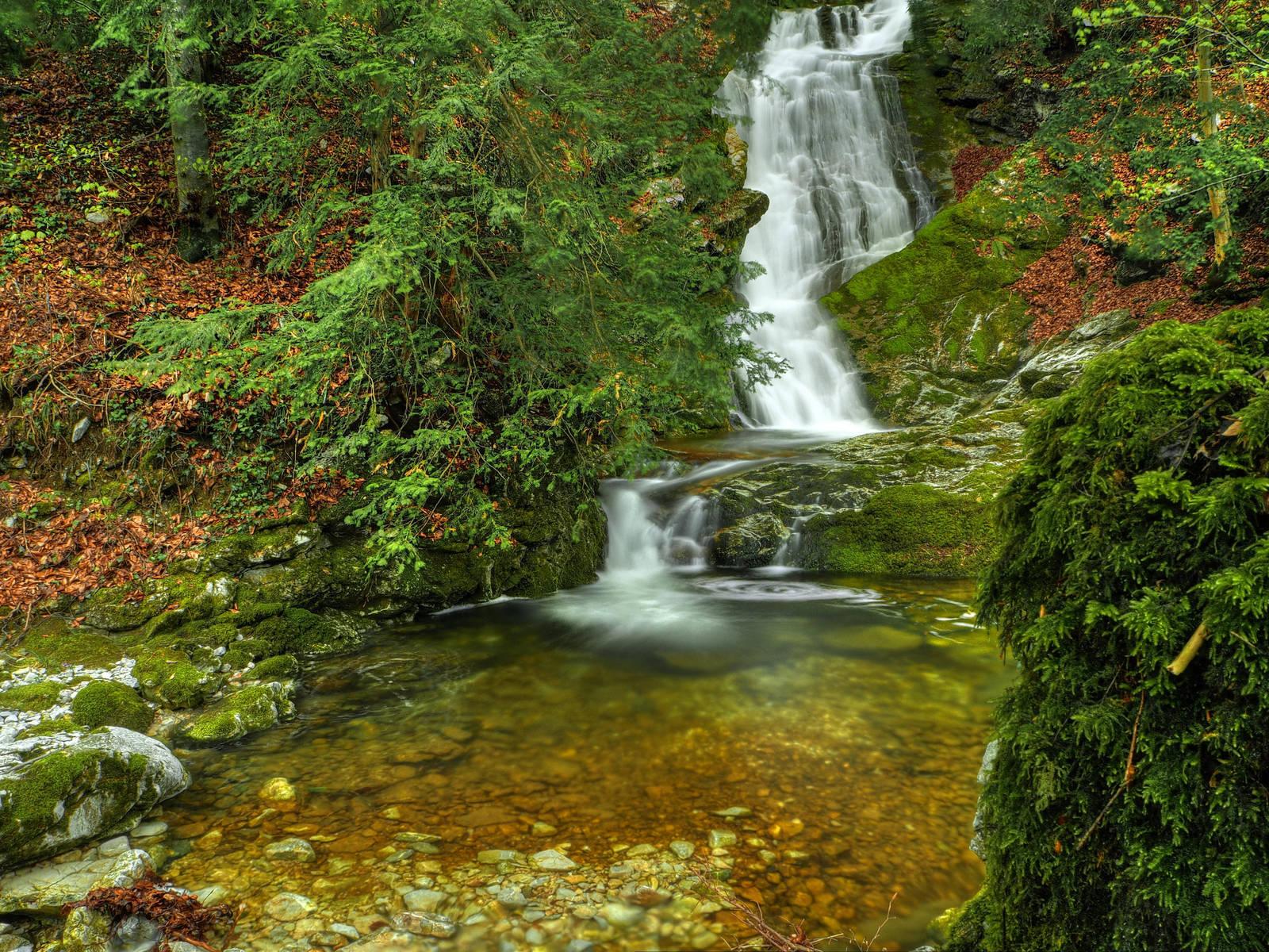 Hidden Water Background by Burtn