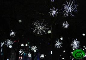 The Luminescent Tree 02 by Idraemir